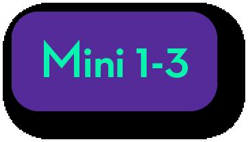 iPad Mini 1-3 Repair